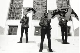 The Black Panther Party: Challenging Police and Promoting Social Change    National Museum of African American History and Culture