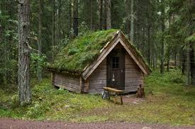 Image result for old shack in woods