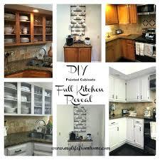 do it yourself kitchen cabinets astonishing ideas painting kitchen cabinets do it yourself for cabinet prepare do it yourself kitchen cabinets
