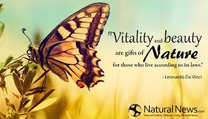 Quote Nature Beauty Best Of Vitality And Beauty Are Gifts Of Nature