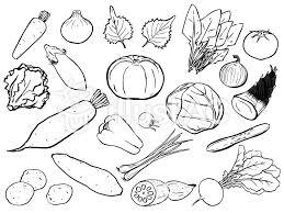 モノクロの野菜セットイラスト No 1142105無料イラストなら