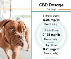 A Chart Of Dogs How Much Cbd Oil Should I Give My Dog Cbd Dosage Chart
