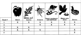 Animal Activity Chart Snow Leopards For Teachers