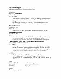 Resume For Junior Copywriter