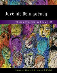 juvenile delinquency theory practice and law th edition  students buy or rent