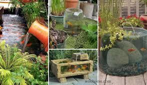 small garden or backyard aquarium ideas