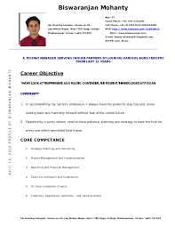 Simple resume format        png