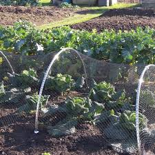 bird netting for garden. Simple Garden Bird Netting Intended For Garden G