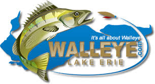 Image result for lake erie walleye pics