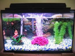 Small Fish Bowl Decorations Baseball Fish Tank Decorations Home Design 60 45