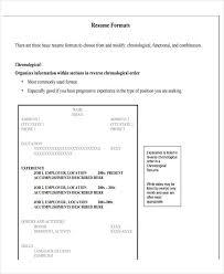 19+ Basic Resume Format Templates - Pdf, Doc | Free & Premium Templates