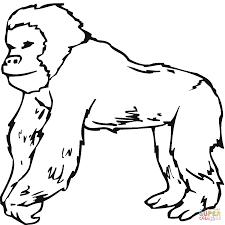 Gorilla Template Drawing Supercoloring Com 2015