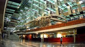 Resultado de imagen para Biblioteca José Vasconcelos, Ciudad de México, México