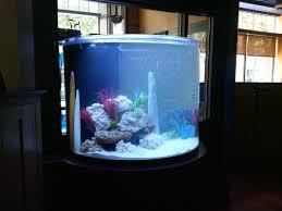 office aquariums. Aquariums Office S