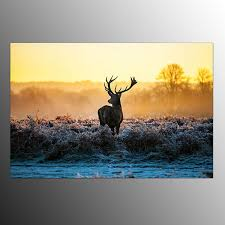 wall art paintings for living roomFramed Art Prints On Canvas For Living Room Single Deer Wall Art