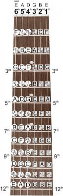 Guitar Notes Chart Guitar Note Chart E Major Chord B Major Chord