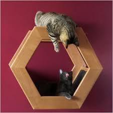 chic cat furniture. Perfect Cat HabiCat Modern Perch For Chic Cat Furniture
