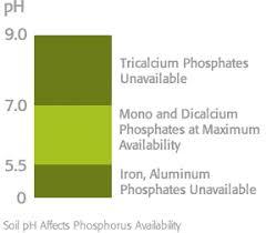 Phosphate Colour Chart Efficient Fertilizer Use Guide Phosphorus Mosaic Crop
