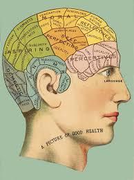 Phrenology Head Chart In 2019 Phrenology Head Art Art Google