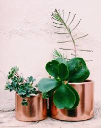 copper planter by justina blakeney3