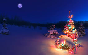 christmas wallpaper. Fine Wallpaper Christmas Tree Glowing At Night In Snow Alberta Canada And Wallpaper