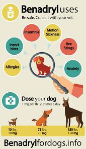 Benadryl Dosage For Dogs Benadryl Dosage For Dogs Dosage Chart