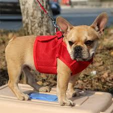 Rabbitgoo Dog Harness Size Chart Rabbitgoo Pet Dog Harness For Small Medium Dog Breathable No Pull Dog Harness Puppy Nylon Mesh Vest With Hook For Pet Supplies