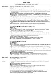 Junior Sales Representative Resume Samples Velvet Jobs