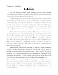 The art institute essay