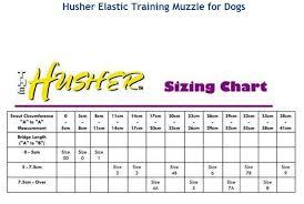 The Husher Elastic Training Aid Muzzle