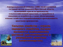 Презентация на тему Презентация Злобиной Яны Целью реферата  3 Агропромышленный
