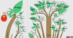 Languages Tree Chart The Root Of All Human Languages Angmohdan Com
