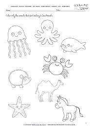 Kindergarten Animal Worksheets