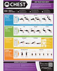 home multi gym workout plan multi gym workout chart chest expander