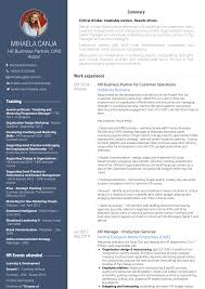 Business Partner Resume Samples And Templates Visualcv