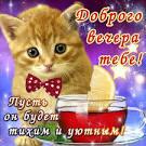 Пожелание добрый вечер