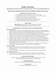 Sample Resume For Credit Risk Analyst Professional 20 Credit Analyst