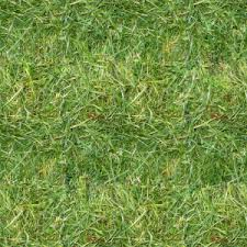 grass texture game. Grass Texture Tile-fully Mapped-DNS-1024 Game T