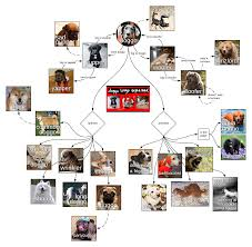 Template Doggo Diagram Lucidchart