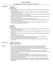 Planner Resume Samples Velvet Jobs