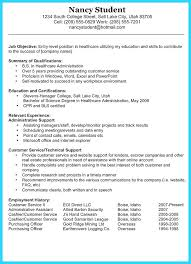 Resume Summary For College Student Resume Example Best Resume