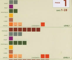 P90x Portion Chart P90x Diet Plan Which Friggin Plan Rippedclub