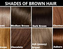 Medium Brown Hair Colour Chart 28 Albums Of Medium Light Brown Hair Color Chart Explore