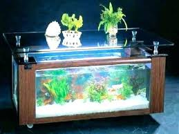 astounding round aquarium coffee table how fish tank coffee table canada
