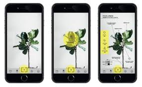 Good App Design Examples 31 Amazing Graphic Design Examples That Will Blow You Away