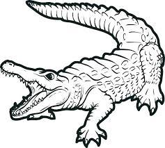florida gators coloring pages gators coloring pages football rugby free florida gators football coloring pages