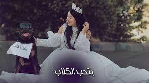 العريس كلب.. البلوجر هبة مبروك تصدم متابعيها - YouTube