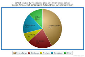 Concussion Grade Chart Concussions Broken Noses In Softball Here Comes The Face