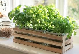 Kitchen Herb Window Planter Box Wooden Trough Metal Plant Pots Indoor Herb  Box