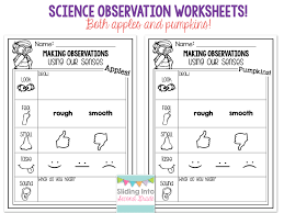 further Natural Resources Worksheet 1 additionally  as well Free Preschool Ordering Number Math Worksheets together with Free Preschool Ordering Number Math Worksheets in addition Grade 7 9 Workbooks furthermore Requirements for growth of plants   Natural Science Worksheet additionally Free Math Worksheets   Nature Themed together with Free Preschool Ordering Number Math Worksheets also Free Math Worksheets   Nature Themed together with Leaf with Veins Worksheet from     TwistyNoodle     Fall. on nature math worksheets